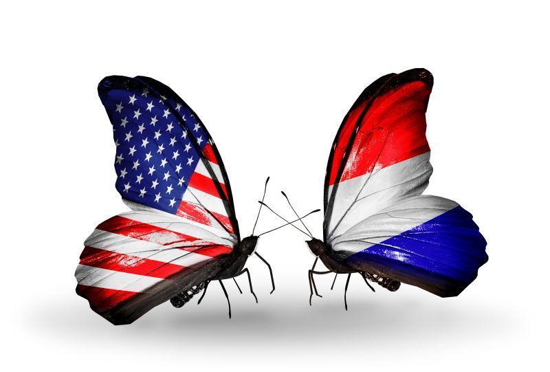 两只翅膀上有美国和荷兰旗帜蝴蝶