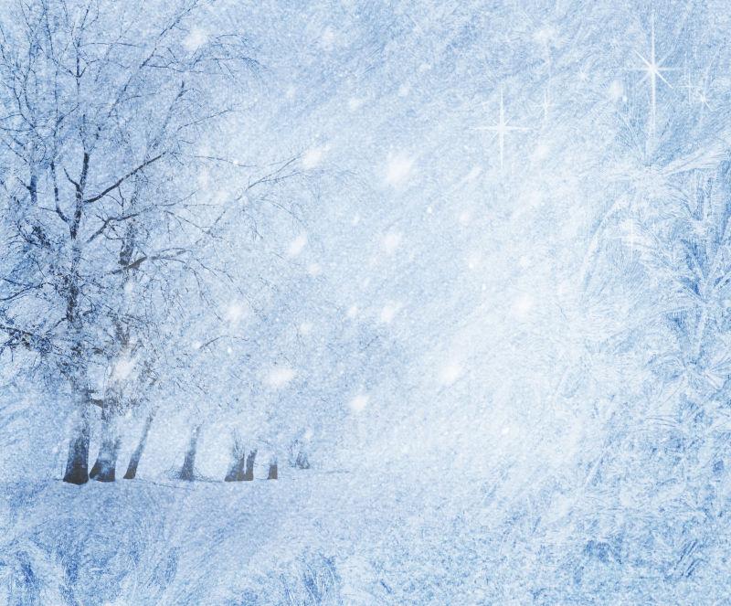 寒风萧萧下的雪