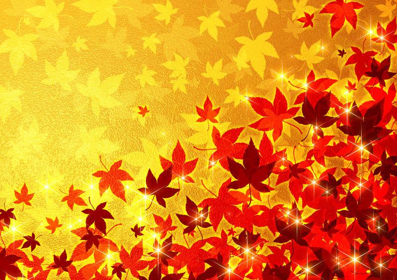 金色背景上的金色枫叶与红色枫叶