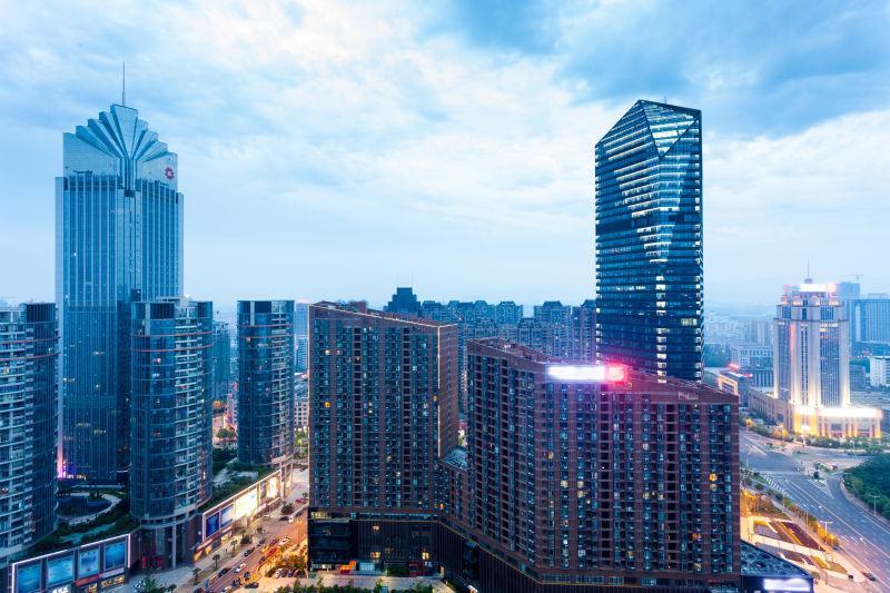 在上海的中国观鸟