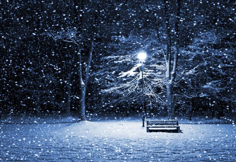 夜色下飘着雪的公园