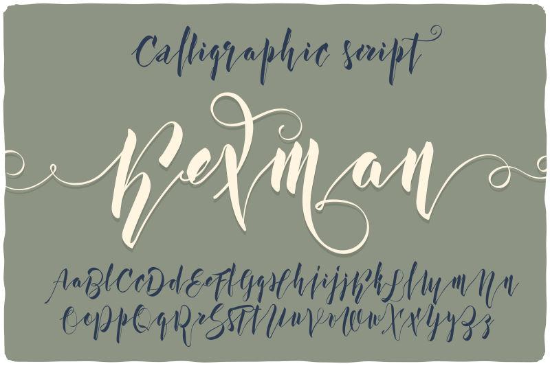 矢量的书法字体