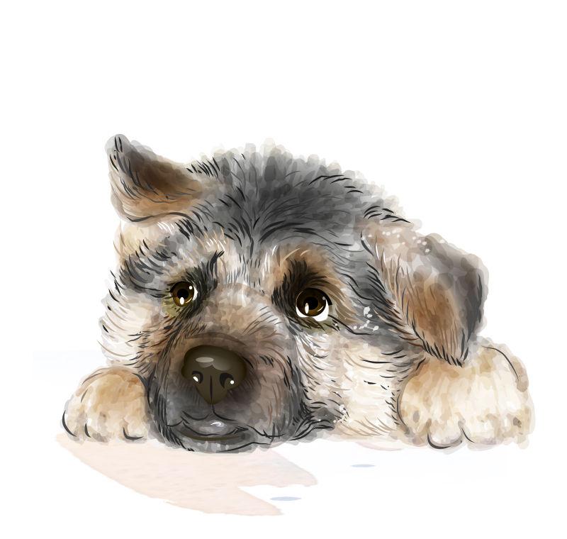 可爱的德国牧羊犬矢量插图