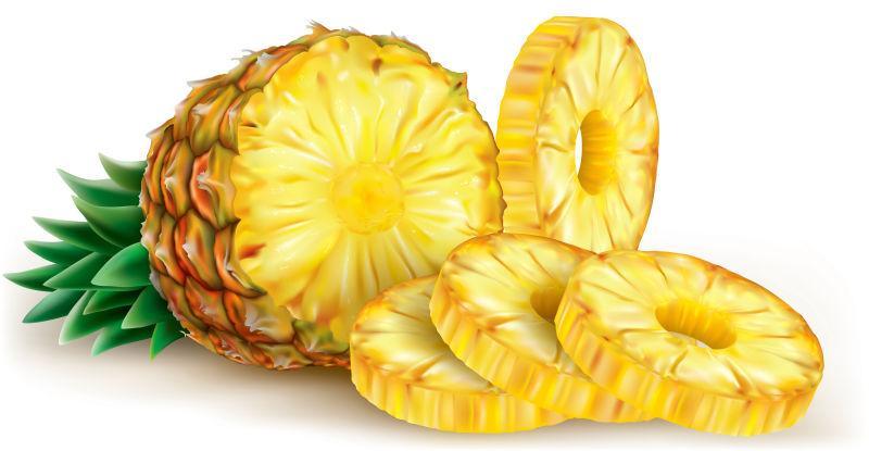 菠萝切片矢量图