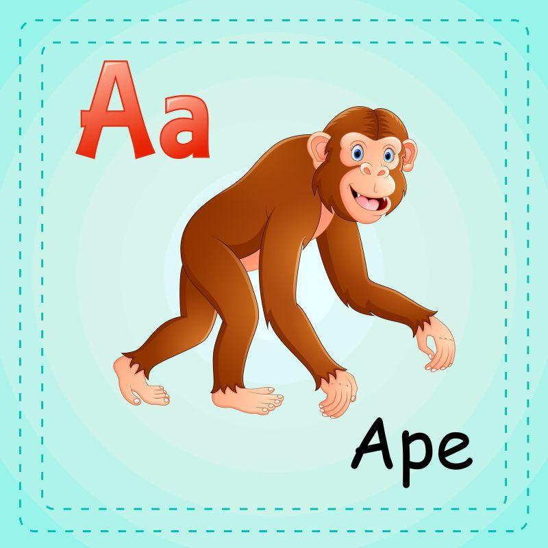 矢量动物字母表A是猿