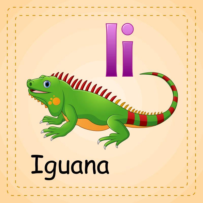 动物字母表我是鬣蜥矢量
