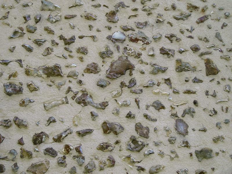 凸出水泥地面的小石头背景