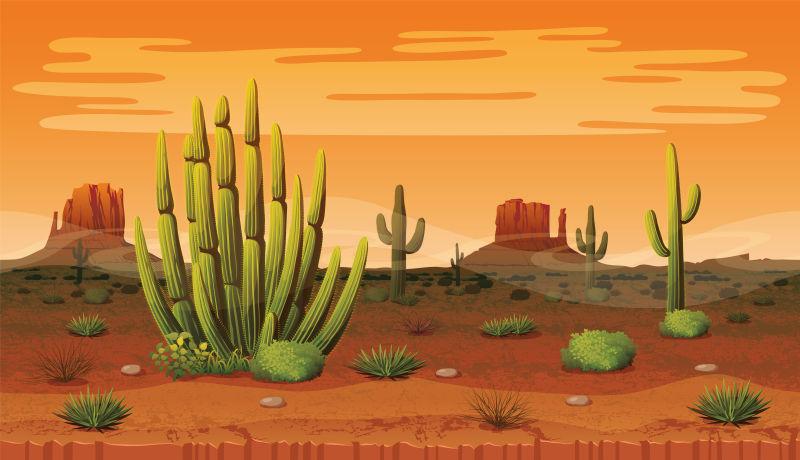 矢量卡通沙漠中的仙人掌插图