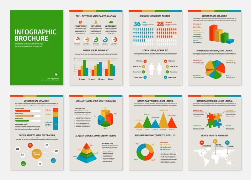 彩色商业A4小册子与信息图形矢量元素