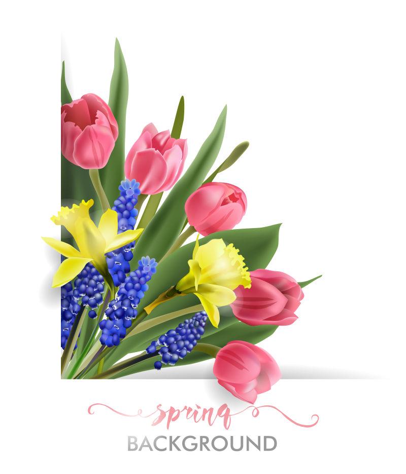 美丽绽放的花卉矢量插图背景