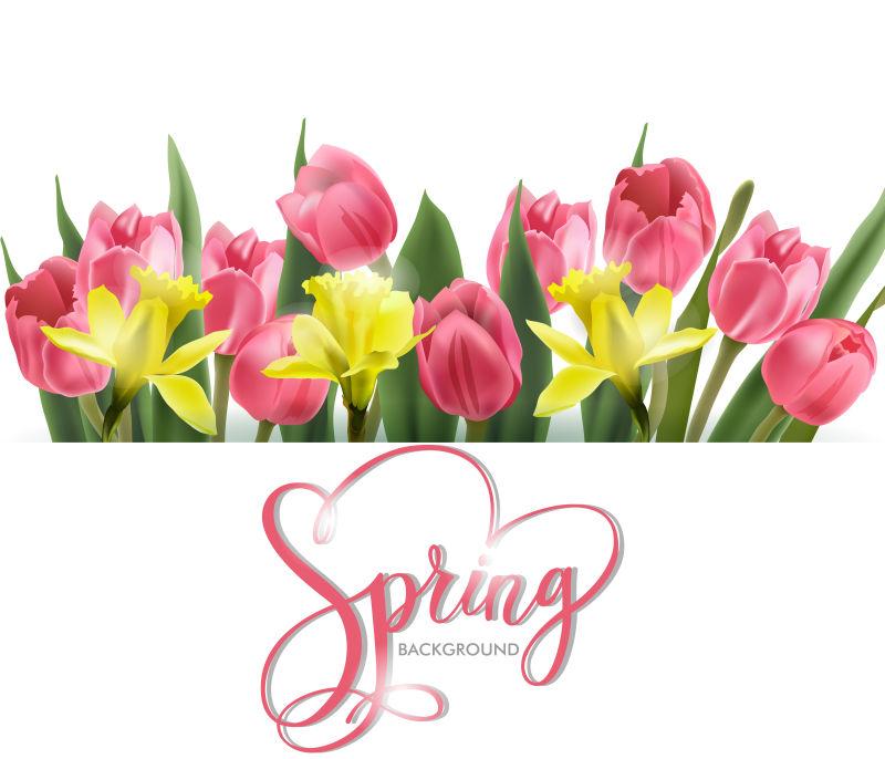 矢量春季主题的花卉元素背景