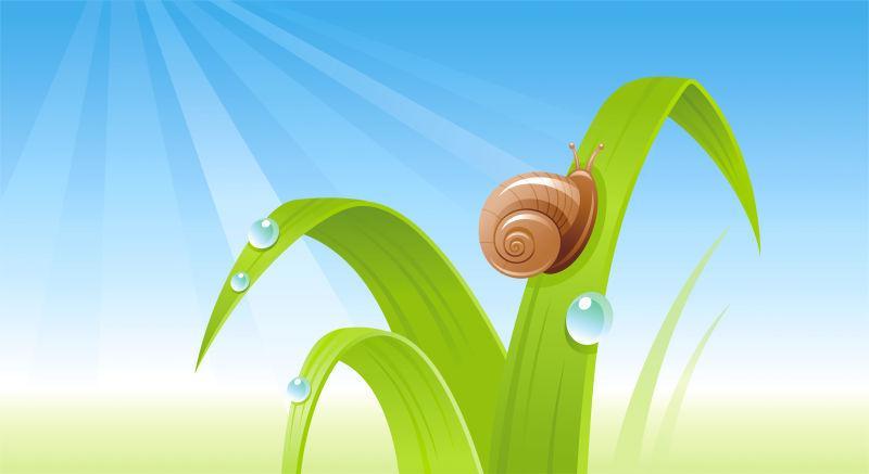 矢量春季绿叶蜗牛设计