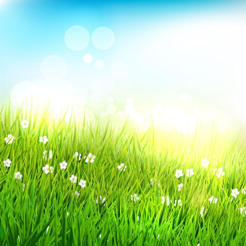 矢量春季草甸