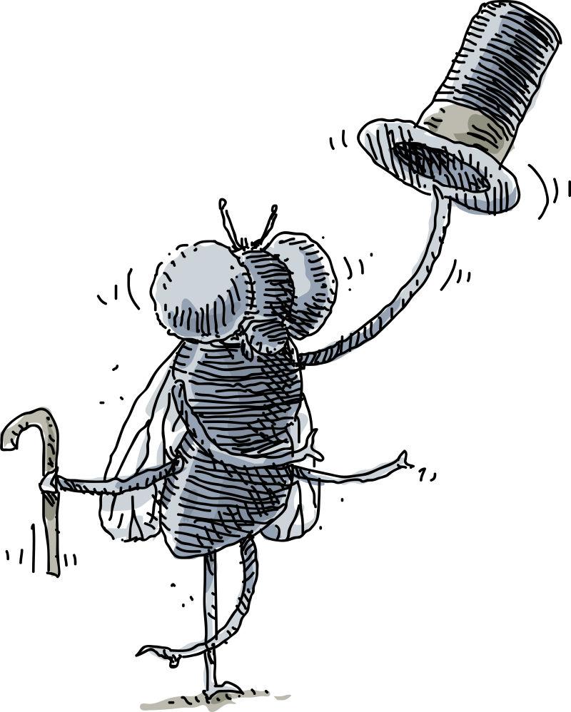 矢量卡通脱帽致敬的苍蝇插图