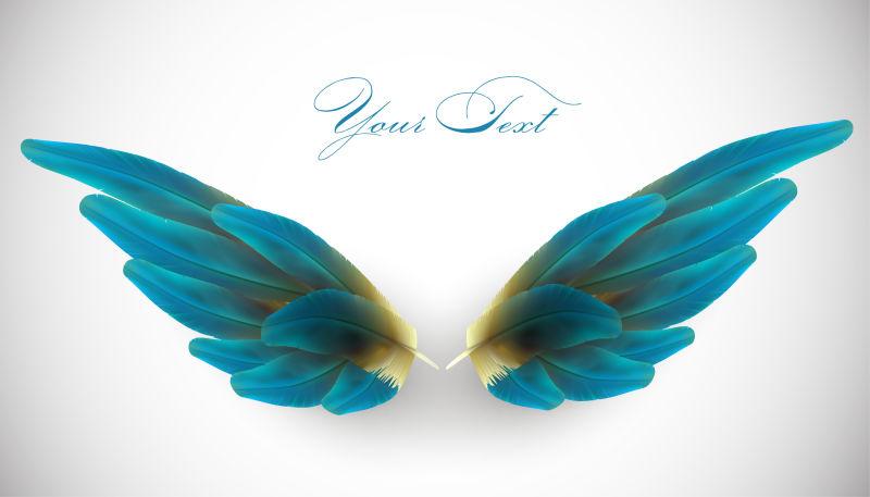 矢量的美丽翅膀