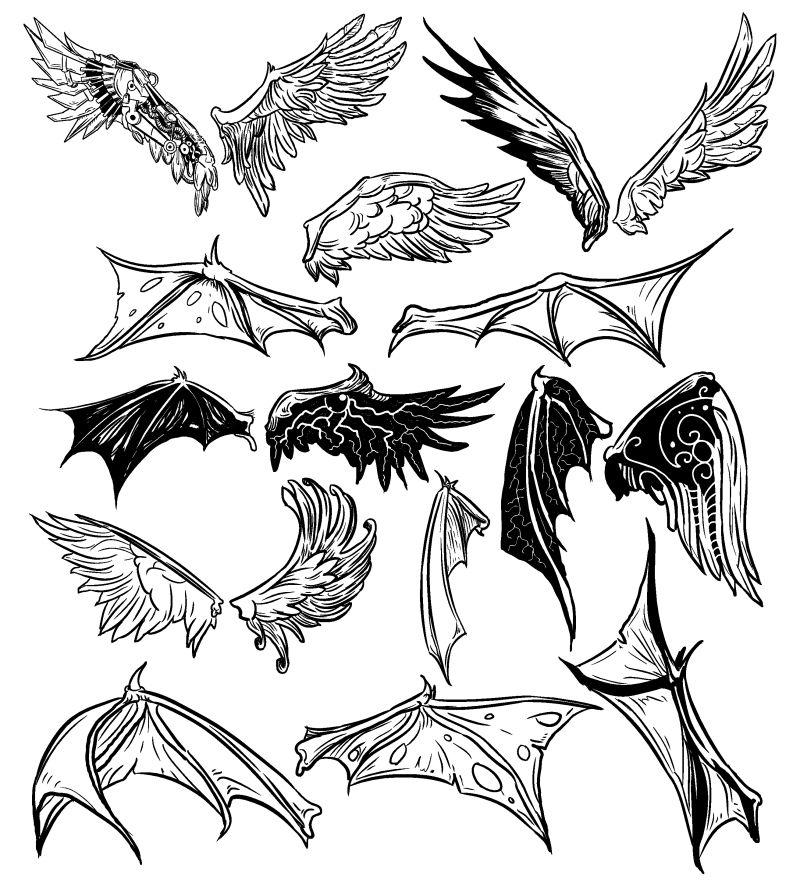矢量的创意手绘翅膀插图
