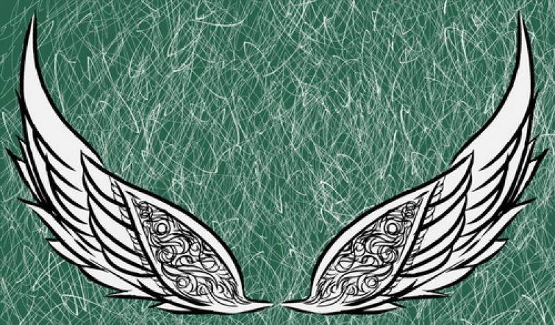 矢量的手绘翅膀