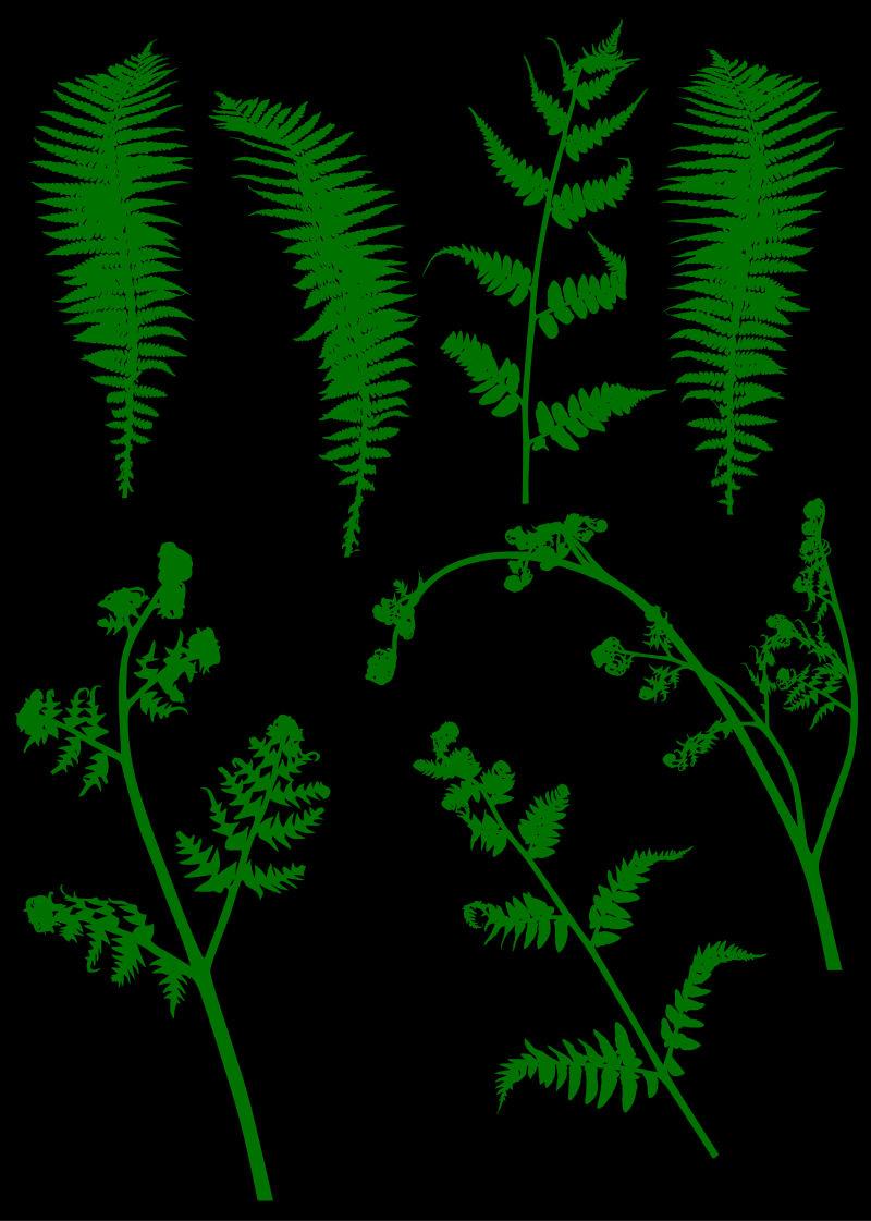 创意矢量绿色草木设计元素