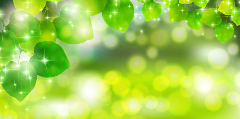 抽象矢量现代绿叶背景