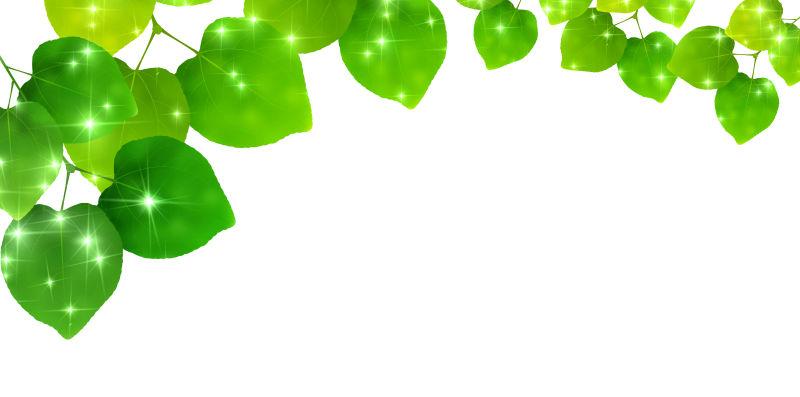 创意矢量绿叶元素的背景