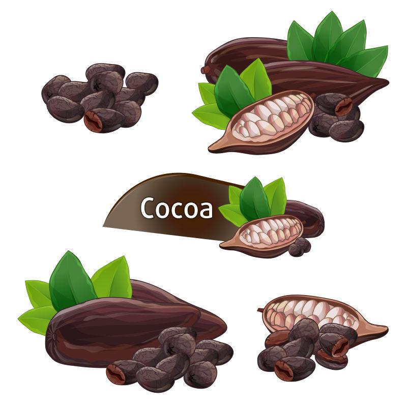 矢量的可可豆荚插图