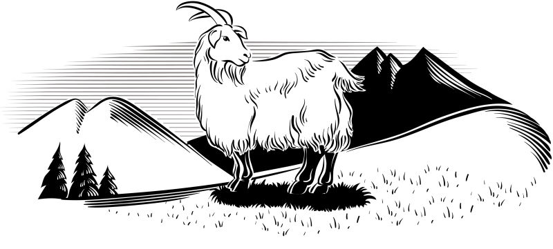 创意矢量农场中的山羊插图