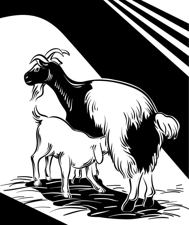创意矢量温馨的羊母子插图