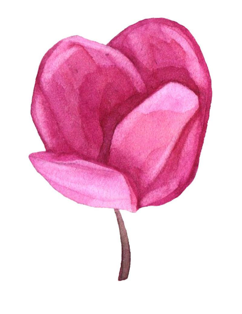 矢量玫红色水彩花朵设计