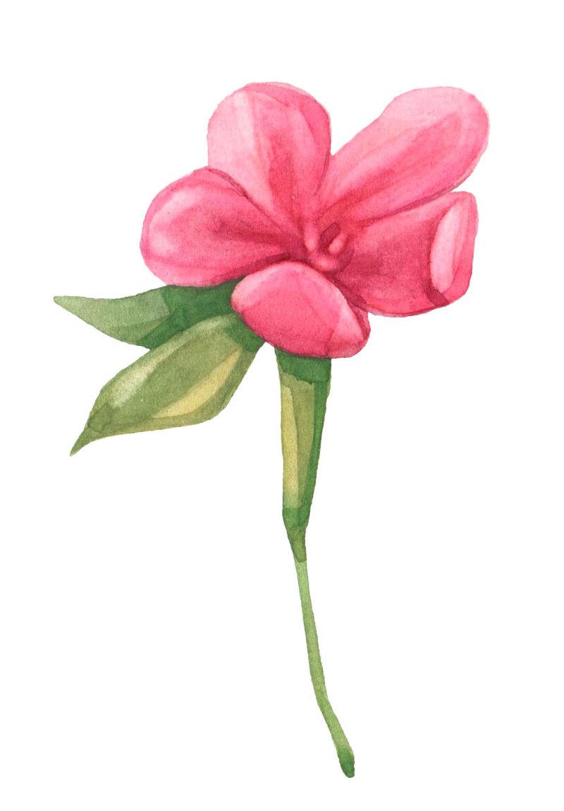 矢量一朵粉色花朵设计
