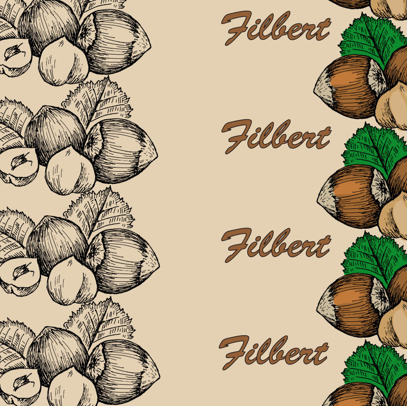 抽象矢量手绘坚果设计插图