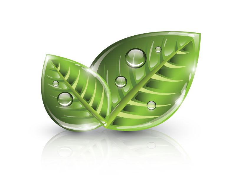 创意矢量生态绿叶设计