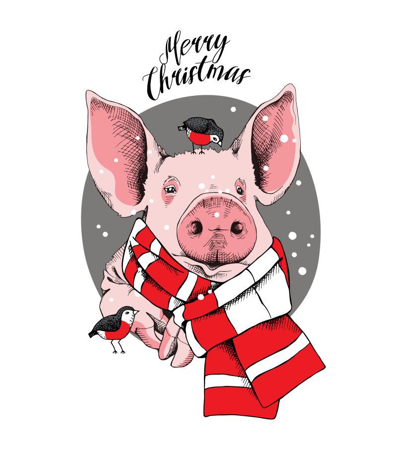 矢量猪年卡通猪设计