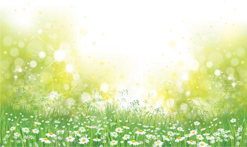 抽象矢量现代雏菊背景设计