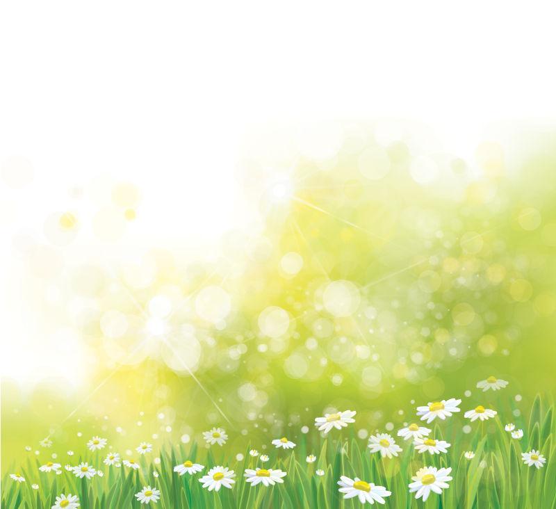 抽象矢量现代春季雏菊元素背景设计