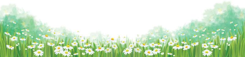 矢量抽象现代春季雏菊元素背景设计