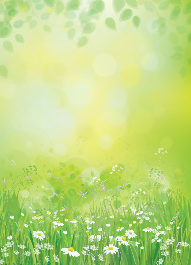 抽象矢量迷人的春季雏菊背景设计