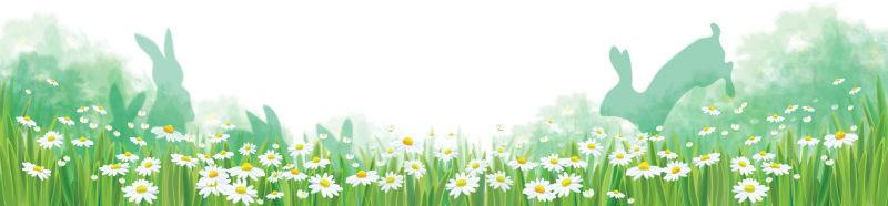 抽象矢量现代雏菊元素春季背景设计