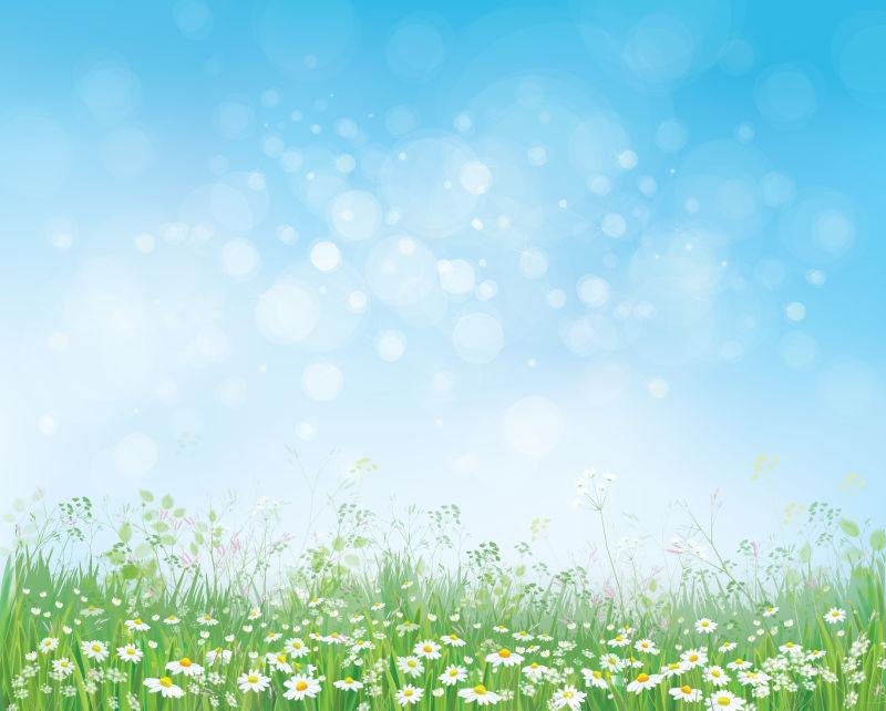 抽象矢量雏菊元素春季背景设计