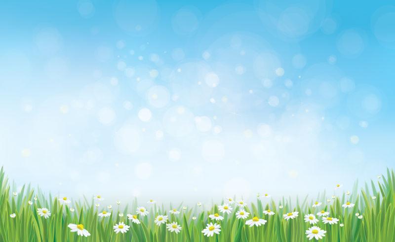 创意矢量现代春季雏菊元素背景设计