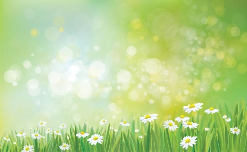 抽象矢量现代春季雏菊元素设计背景