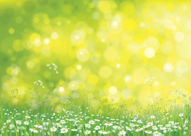 抽象矢量雏菊元素设计背景