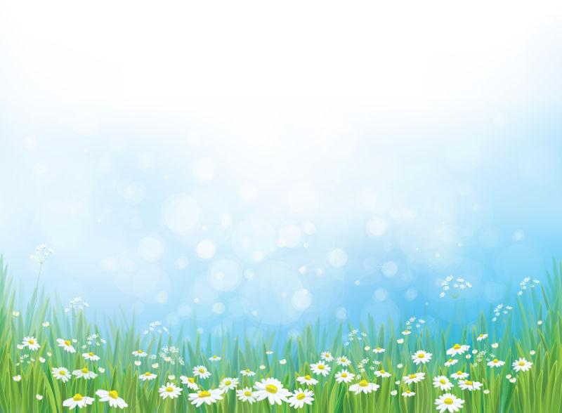 抽象矢量现代雏菊元素背景设计