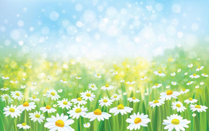 创意矢量雏菊元素装饰设计自然背景