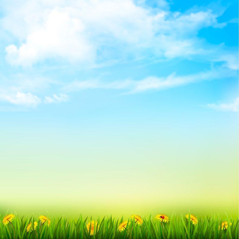 创意矢量美丽的春天背景设计