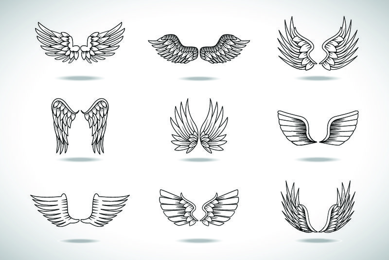 在灰色背景上设置独立的机翼草图-收集手绘天使翅膀-抽象涂鸦矢量插图-平面设计-用于标志图标纹身模板徽章标签和艺术设计