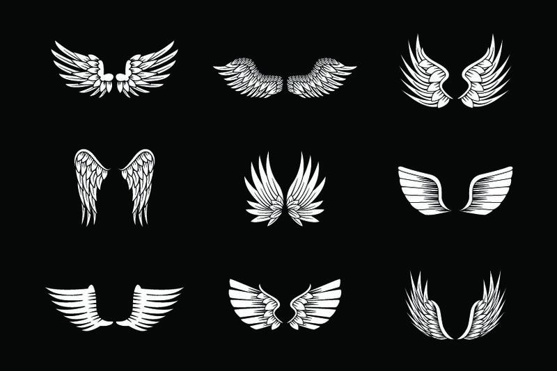 在黑色背景上单独设置翅膀草图-收集手绘天使翅膀-抽象涂鸦矢量插图-平面设计-用于标志图标纹身模板徽章标签和艺术设计