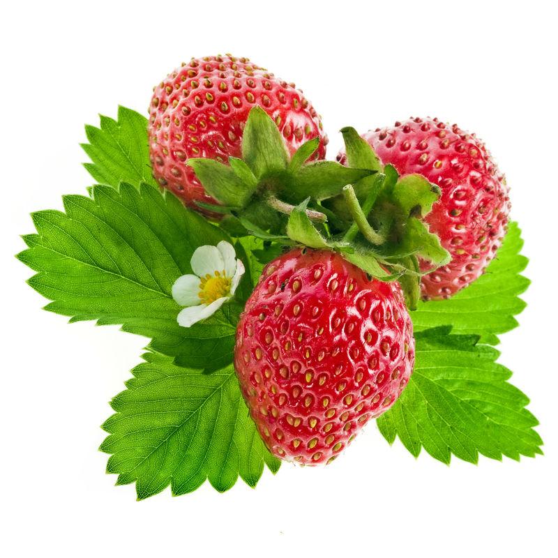 新鲜草莓果实-花和绿叶隔离
