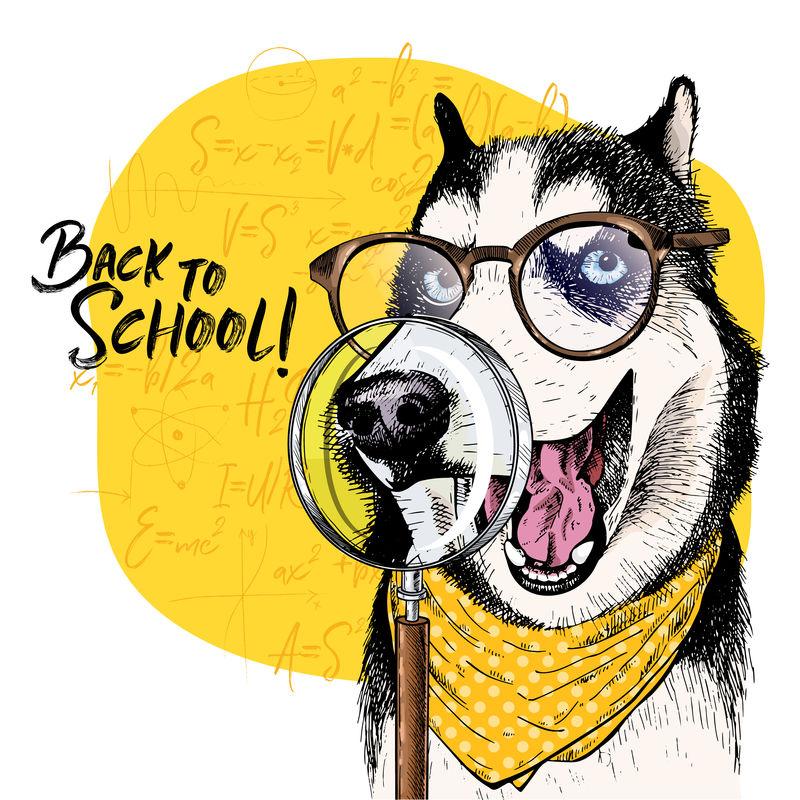 带放大镜和大鼻子倒影的西伯利亚赫斯基犬矢量图。回到学校的插图。后台的数学公式。手绘宠物门。学习海报,学生动画片。