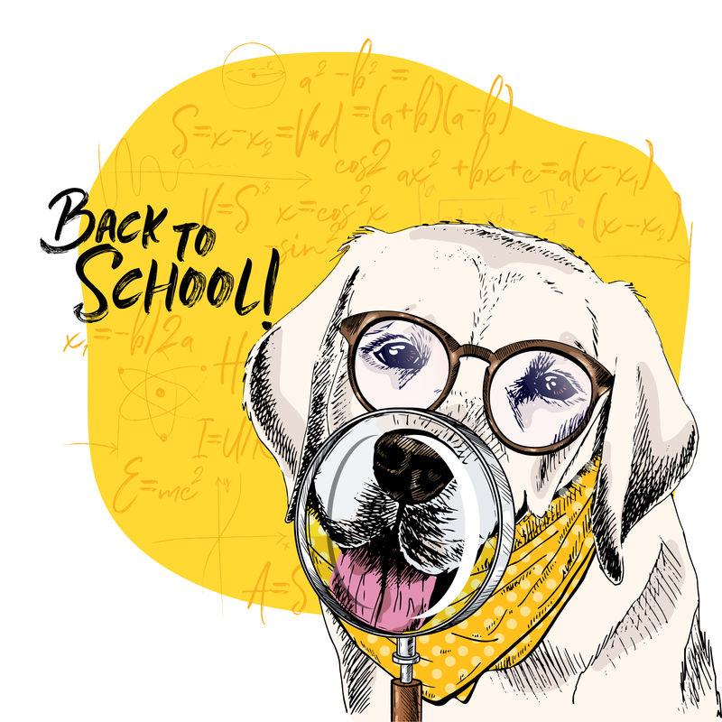 带有放大镜和大鼻子反射的拉布拉多猎犬矢量图。回到学校的插图。后台的数学公式。手绘宠物门。学习海报,学生动画片。