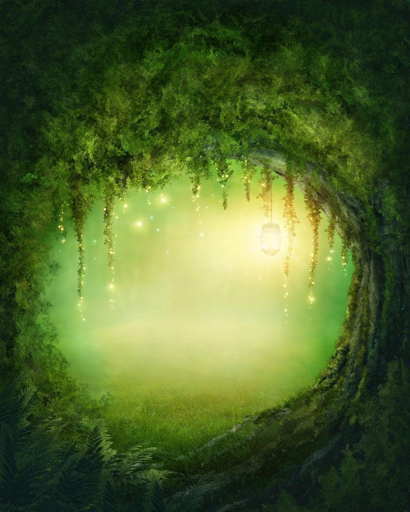 迷人的黑暗森林和灯光